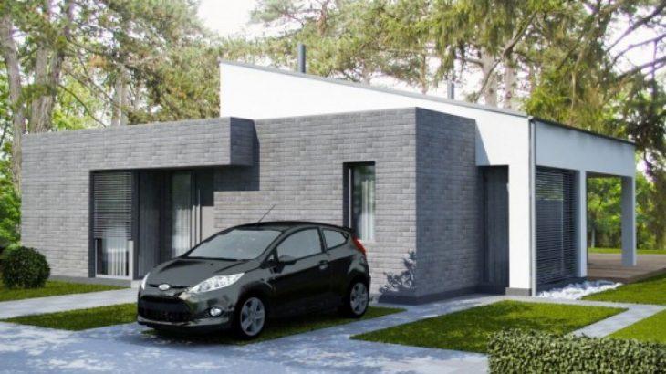 Проект одноэтажного дома с террасой P43 - фото №1