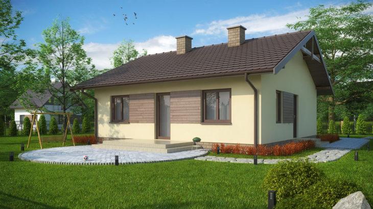 Проект одноэтажного дома с террасой P137 - фото №1